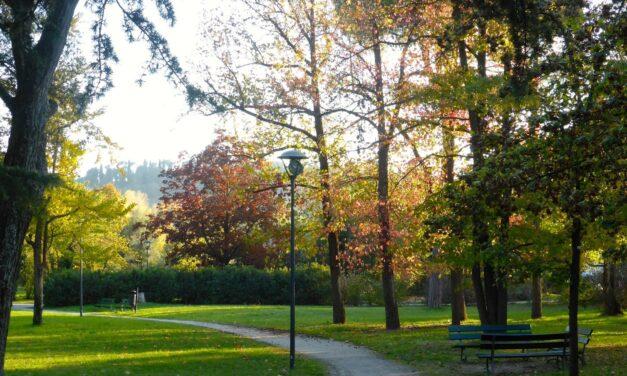 Covid, sospese attività sportive non individuali, giochi nei parchi, scuole di musica