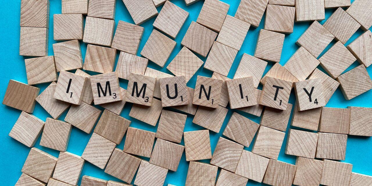 Vaccinazioni e immunità di gregge, Imola può farcela entro l'estate