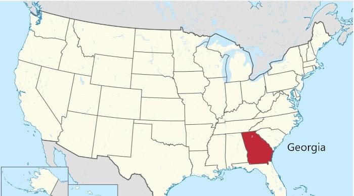 I repubblicani in Georgia approvano nuove regole sul diritto di voto Usa