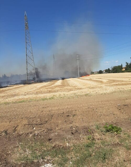 Bruciano fieno e spighe, il vento soffia e vanno a fuoco dieci ettari di terreno