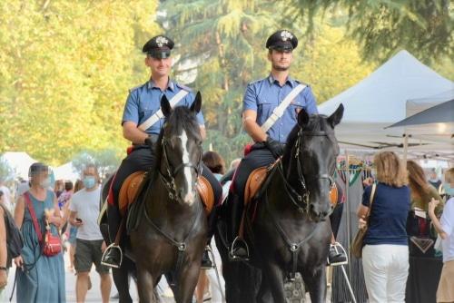 Cavalli purosangue in allevamento, denunciato il titolare per falsità ideologica