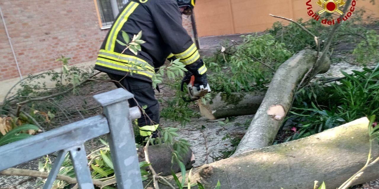 Bomba d'acqua e stravento, alberi caduti, strade interrotte, auto danneggiate