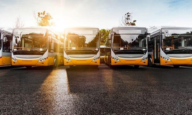 Autobus sempre più vecchi crollano le immatricolazioni, ma l'Emilia Romagna tiene